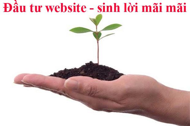 dau-tu-thiet-ke-website-ban-hang-sinh-loi